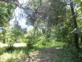 Restituiamo parco Mazzarino alla città